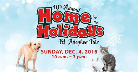 annual home   holidays pet adoption fair city
