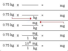metric conversion exle answers