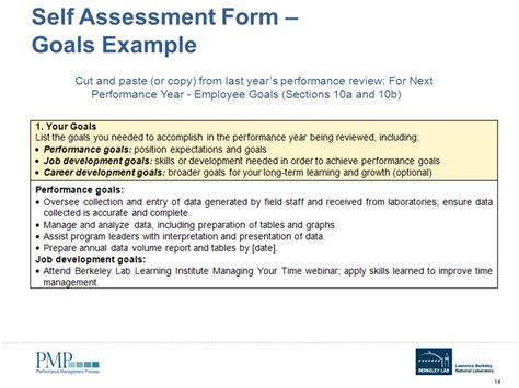 performance review goals examples emmamcintyrephotographycom