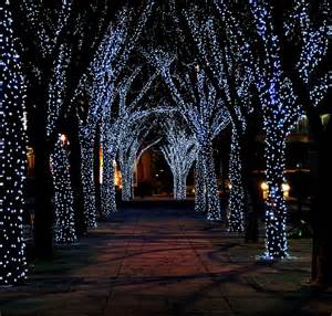 o christmas trees trippy design2share home decorating