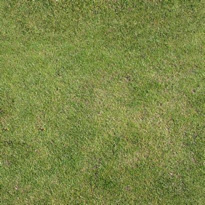 Free Sample   Soft Grass Floor   Free Samples   Amazing