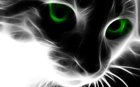 cat eyes wallpaper hd abstract cat green eyes hd desktop free download wallpaper