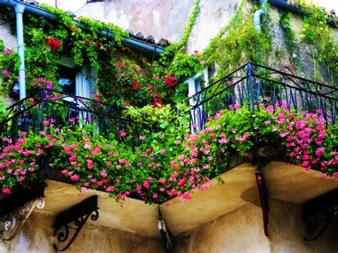 allestimento terrazzi giardiniere a allestimento terrazzi giardinieri