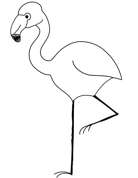 free printable flamingo coloring page clipart best