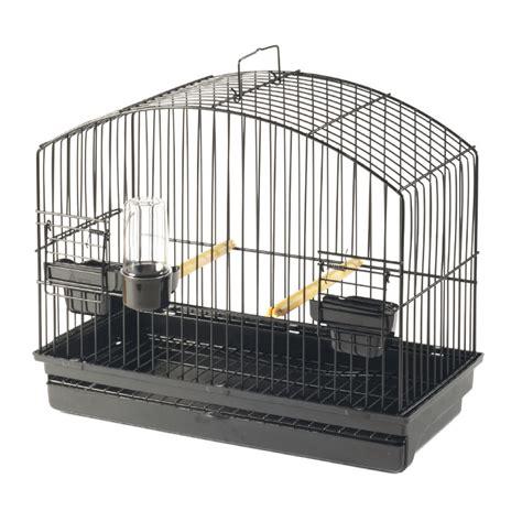 gabbie da esposizione gabbia da esposizione border sta soluzioni