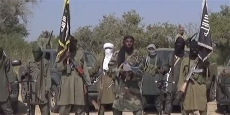 boko haram the history of an jihadist movement princeton studies in muslim politics books army releases 1 271 boko haram detainees
