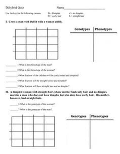 Chapter 6 Dihybrid Cross Worksheet Answer Key by Monohybrid Cross Worksheet Different Types Different