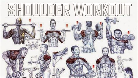 Shoulder Workout At Home by The Best Shoulder Exercises For Mass Fitness Workouts