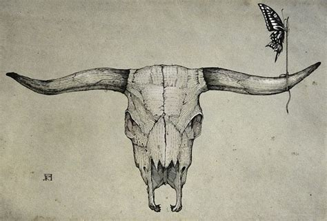 longhorn tattoo 25 best longhorn ideas on