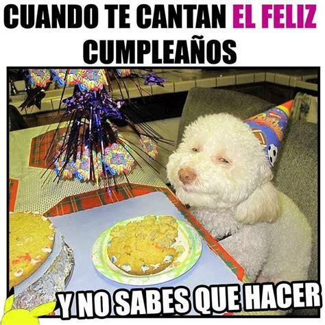 imagenes graciosas cumpleaños feliz im 225 genes divertidas para cumplea 241 os para compartir