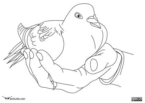 imagenes para dibujar de palomas from paloma de la paz colouring pages