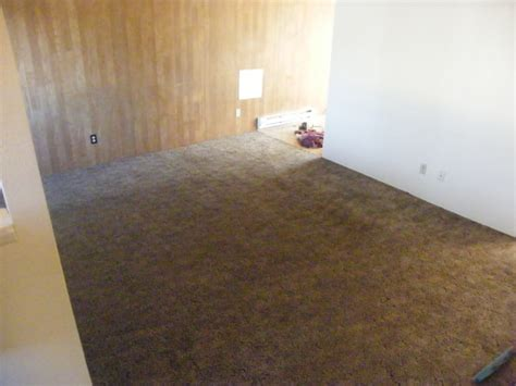 carpet cleaning 2 bedroom apartment apartment carpet cleaners home the honoroak