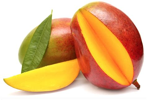 dogs mango can dogs eat mangoes side effects health benfits tips