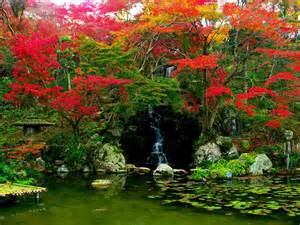 Flower Garden Japan Jardins De Agharta Jardim Japon 202 S Um Estilo De Jardim