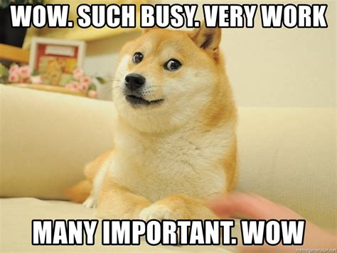 Doge Wow Meme - wow such busy very work many important wow so doge
