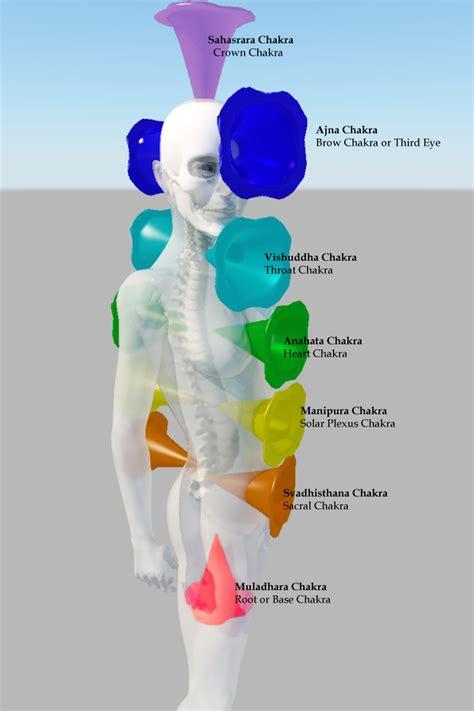 chakras       consciousness