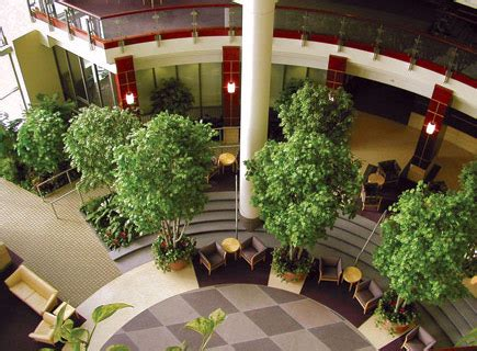 indoor landscaping interior landscaping ideas for your work place an alli event
