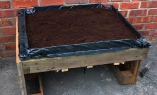 Supérieur Comment Faire Un Jardin Potager #1: img-9098-medium.jpg