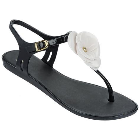Special Sandal Flat Summer Merah mel special 2 flower flat summer jelly sandal black
