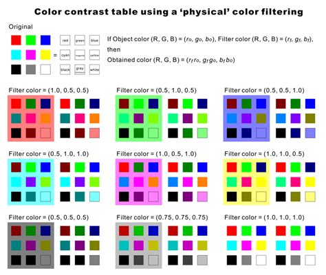 color constancy psychology 色の恒常性
