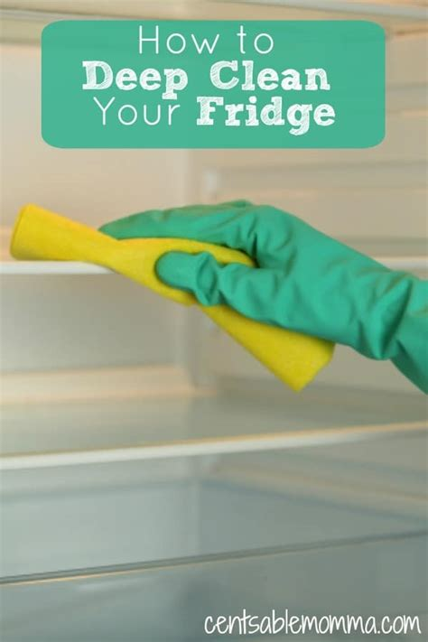 how to deep clean how to deep clean your fridge centsable momma