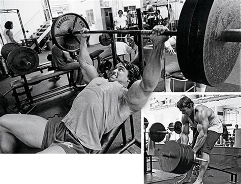 arnold bench press arnold a to z superset man