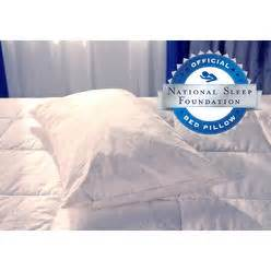 Sears Bed Pillows by Bed Pillows Sears