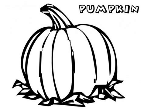 blank pumpkin coloring pages coloring home