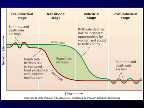 section 4 1 population dynamics human population dynamics