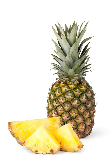 Pineapple Fruit listen up everything you about pineapple is a lie
