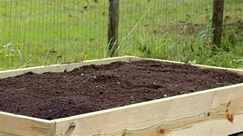 cheap raised beds build cheap raised garden beds inexpensive raised beds