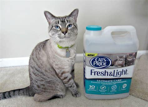 fresh and light cat litter cat s pride fresh light 100 visa gift card giveaway