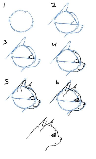 how to draw doodle cat 1 savanna williams how to draw cats faces heads