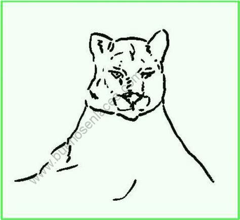 imagenes animales carnivoros para imprimir huellas de animales salvajes para colorear e imprimir imagui