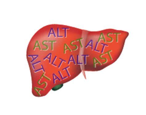 alt: liver function test viral hepatitis
