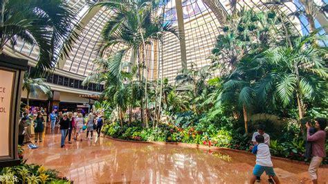 hotel review  mirage hotel  casino gate