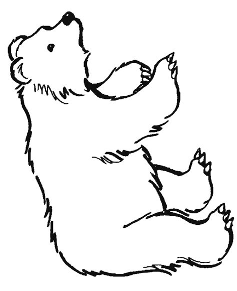 Grizzly Bear Coloring Pages Az Coloring Pages Grizzly Coloring Page