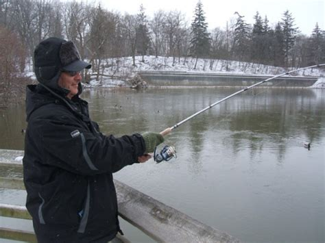 thames river fishing anglers hooked on urban fishing western journalism report
