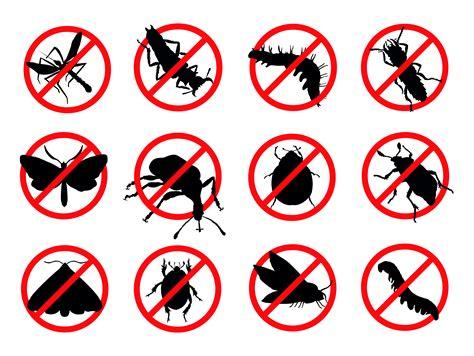 bed bug pest control service pest control service bed bug control las vegas