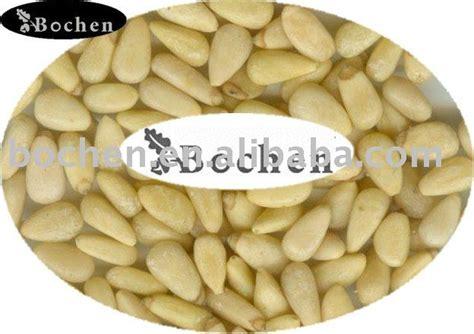 Dijamin Pine Nuts Kacang Pinus 100gr pine nut kernels products china pine nut kernels supplier