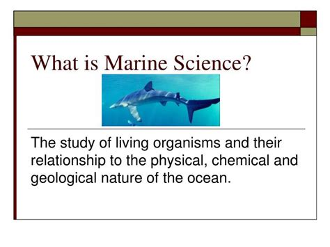 Ppt What Is Marine Science Powerpoint Presentation Id 491269 Marine Biology Powerpoint