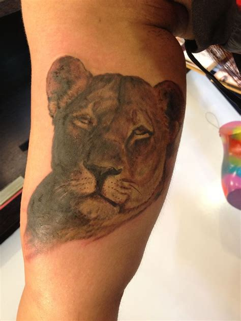 lioness tattoo fresh ink lioness by mikey lioness