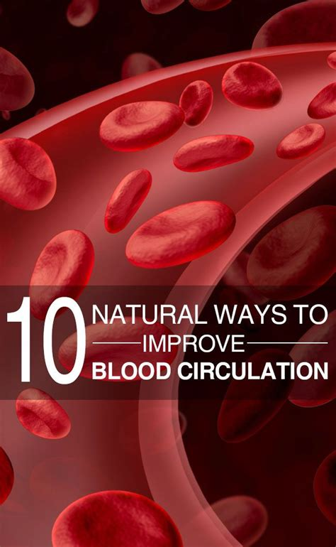 8 Ways To Improve Your Circulation by 1000 Ideas About Circulation On