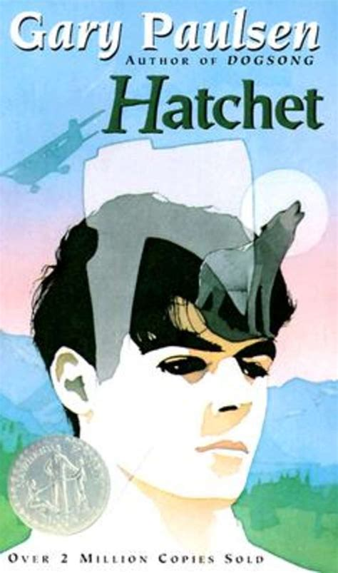 pictures from the book hatchet in the book hatchet by gary paulsen what was the problem