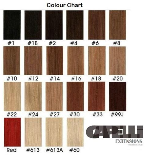 the wigs and hair extensions colour guide pinterest the world s catalog of ideas