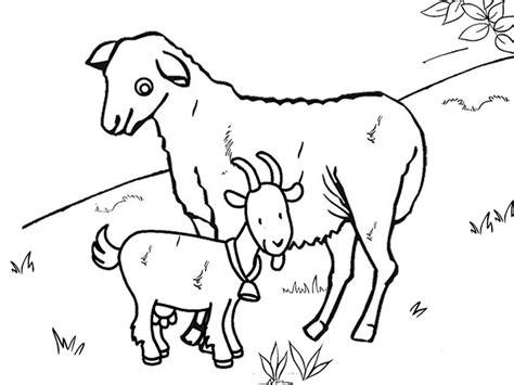farm goat coloring page farm animal template animal templates free premium