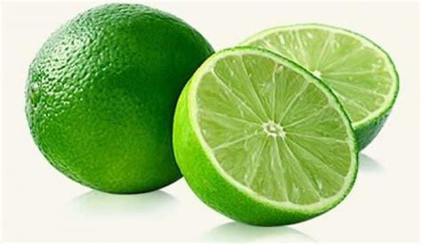 imagenes de limones verdes limones verdes empresa