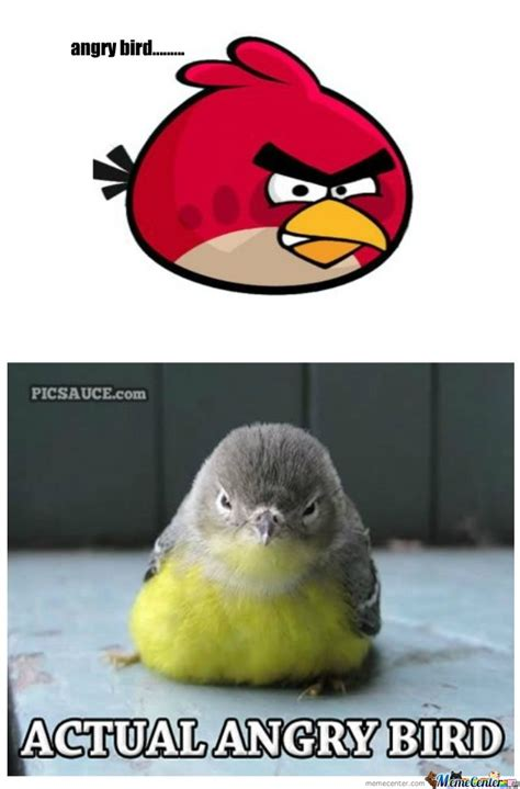 Angry Bird Meme - angry bird by sonispios meme center