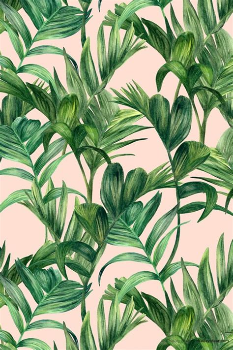 printable leaves for miniature plants apr foliage colourway 1 169 shelley steer palms