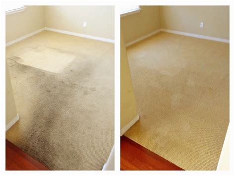 carpet and upholstery cleaners reviews zero res carpet cleaning reviews carpet menzilperde net
